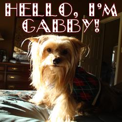 gabby2