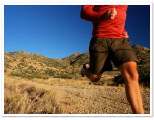 endurance (1)